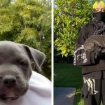 Billie Eilish adopted one of the puppies she has been fostering